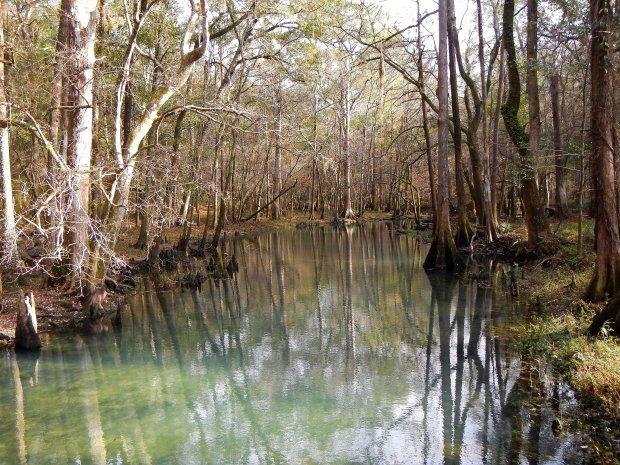 Blue hot springs, Florida Caverns State Park, Florida