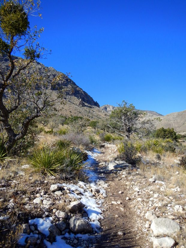 Stream near beginning of Devil's Hall Trail, Guadalupe Mountains National Park, Texas