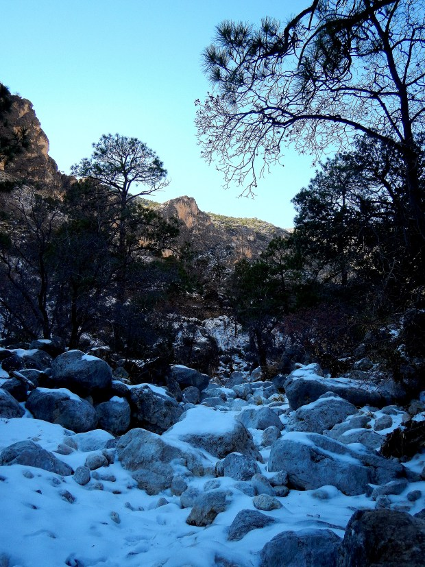 Snow in the wash, Devil's Hall Trail, Guadalupe Mountains National Park, Texas