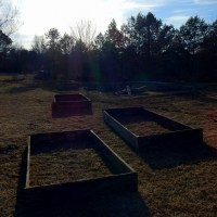 WWOOFing in Tennessee: An Introduction