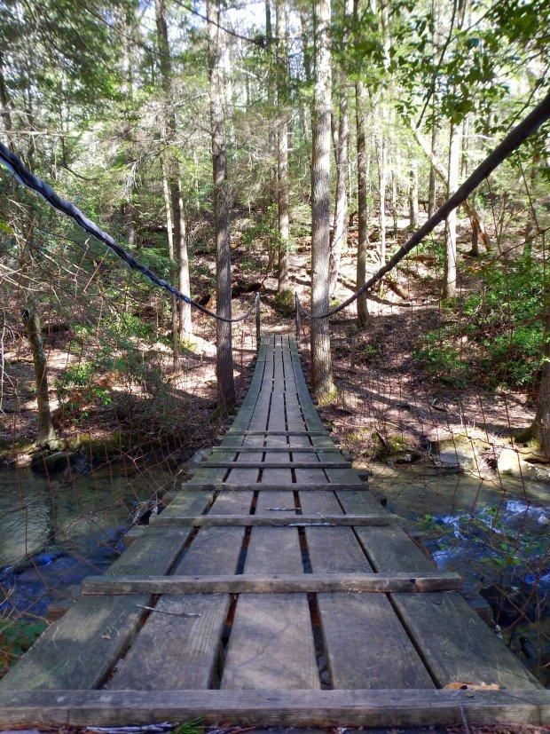 Bridge on Greeter Falls Loop Trail, South Cumberland State Park, Tennessee