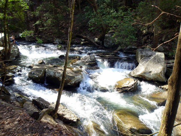 Rushing water on the hike to Cherokee Falls, Waterfalls Trail, Cloudland Canyon State Park, Georgia