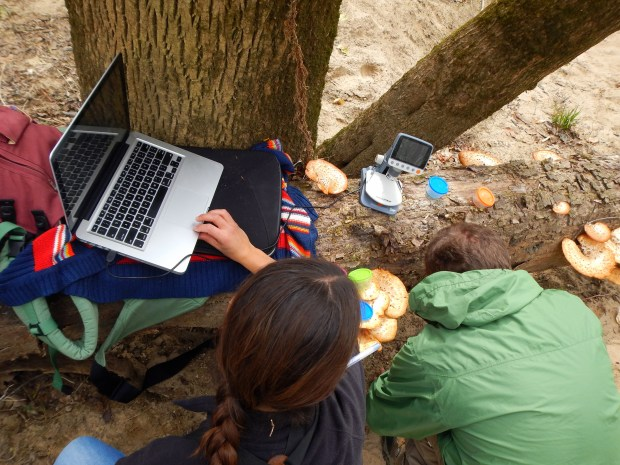 Setting up microscope and computer to document captured insects, Bluebell Island, Tennessee