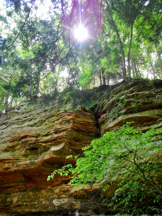 View of the cliffs from the ravine, Trail 1, Shades State Park, Indiana
