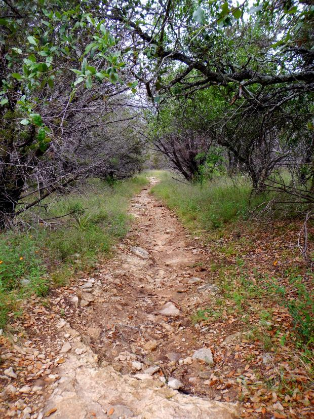 Trail 500, Pace Bend State Park, Lake Travis, Texas