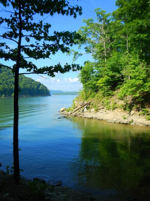 Near Shallow Flats, Cave Run Lake, Daniel Boone National Forest, Kentucky
