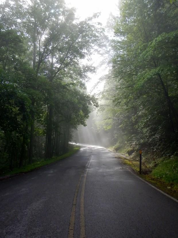 Foggy drive up Pinnacle Mountain, Cumberland Gap National Historical Park, Kentucky