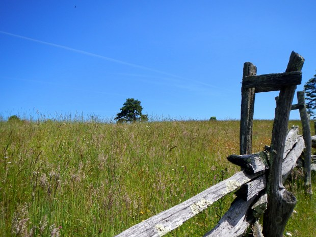 Pasture fence and field, Hensley Settlement, Cumberland Gap National Historical Park, Kentucky