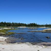 A Magical Hike in Great Wass Island Preserve