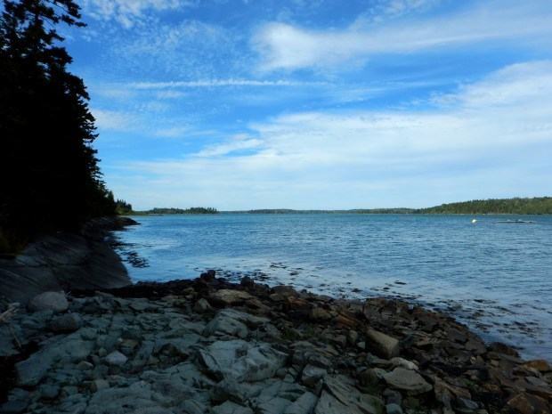Cobscook Bay, Maine