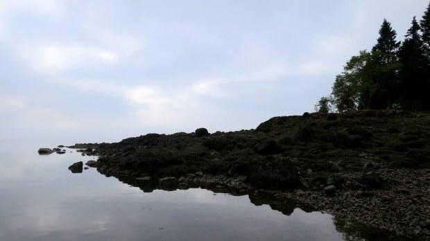 Fog, Maine coast