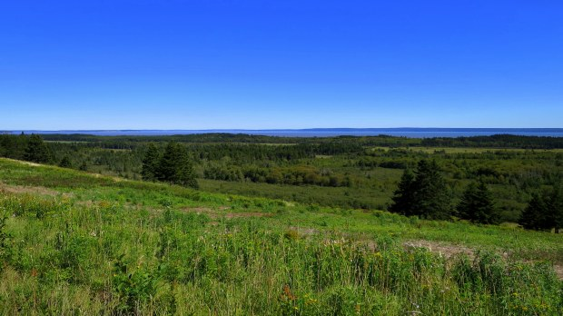 Fields overlooking the Bay of Fundy, New Brunswick, Canada