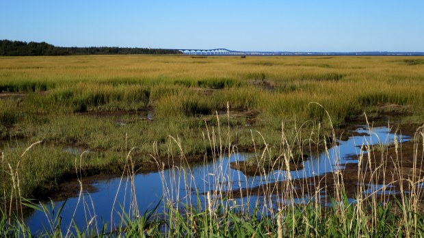 Confederation Bridge from Cape Jourimain National Wildlife Area, New Brunswick, Canada