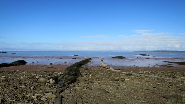 Beach with limestone reef, Joggins Fossil Cliffs, Nova Scotia, Canada