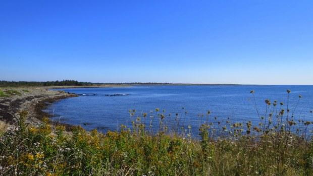 View of Big Pond Cove, Coastal Trail, Brier Island Nature Preserve, Nova Scotia, Canada