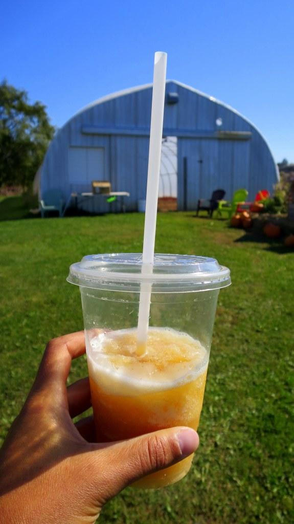 Apple cider slushie on return to Stirling Fruit Farms farm stand, Wolfeville, Nova Scotia, Canada