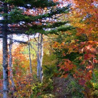 Cape Breton Highlands National Park, Part 4: Aspy Trail and Beulach Ban Falls