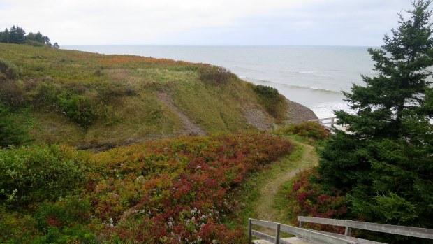 Path down to beach, Arisaig Provincial Park, Nova Scotia, Canada