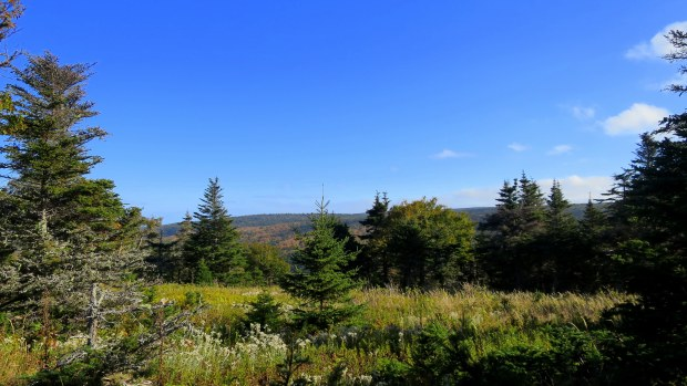 Skyline Trail, Cape Breton Highlands National Park, Nova Scotia, Canada