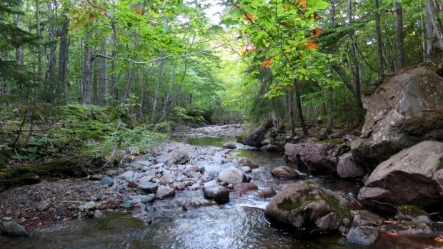 MacIntosh Brook, Cape Breton Highlands National Park, Nova Scotia, Canada