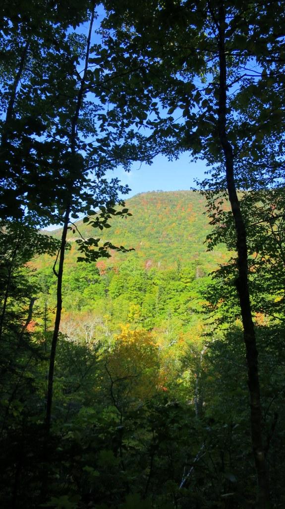 Valley through the trees, Aspy Trail, Cape Breton Highlands National Park, Nova Scotia, Canada