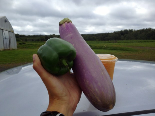 First apple cider slushie with eggplant and green pepper, Stirling Fruit Farms farm stand, Wolfeville, Nova Scotia, Canada
