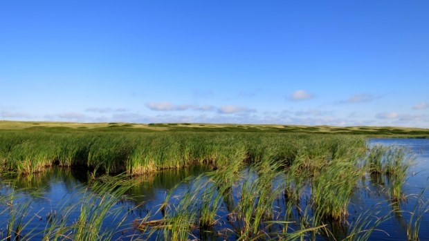 Bowley Pond, Greenwich Dunes Trail, Greenwich, Prince Edward Island National Park, Prince Edward Island, Canada