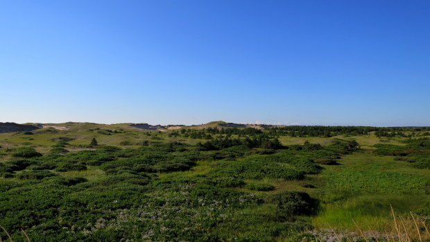Dunes, Greenwich Dunes Trail, Greenwich, Prince Edward Island National Park, Prince Edward Island, Canada