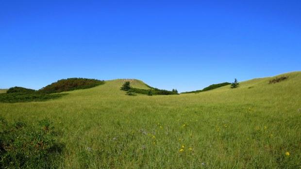 Back side of parabolic dunes, Tlaqatik Trail, Greenwich, Prince Edward Island National Park, Prince Edward Island, Canada