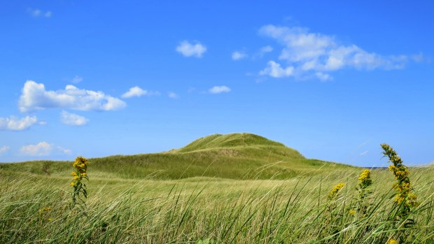 Dunes, near Brackley Bay, Brackley-Dalvay, Prince Edward Island National Park, Prince Edward Island, Canada