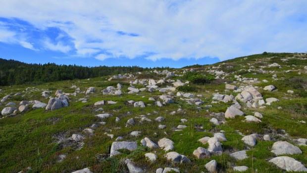 White Point, Cape Breton Island, Nova Scotia, Canada