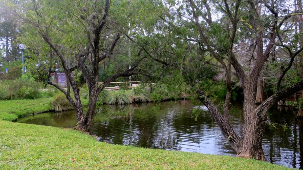 George C. McGough Nature Park, Largo Narrows, Florida