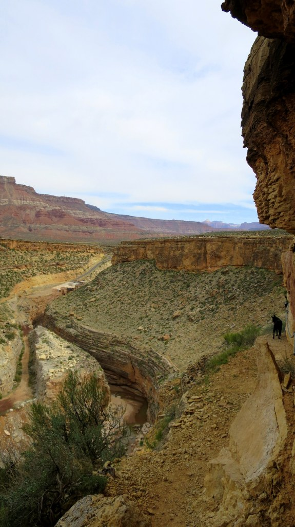 Trail dropping into the canyon, Canal Trail, Hurricane Cliffs Recreation Area, Utah