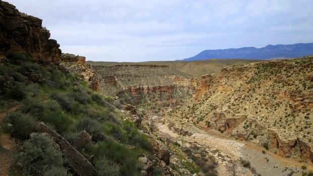 View downstream near beginning of descent on Canal Trail, Hurricane Cliffs Recreation Area, Utah