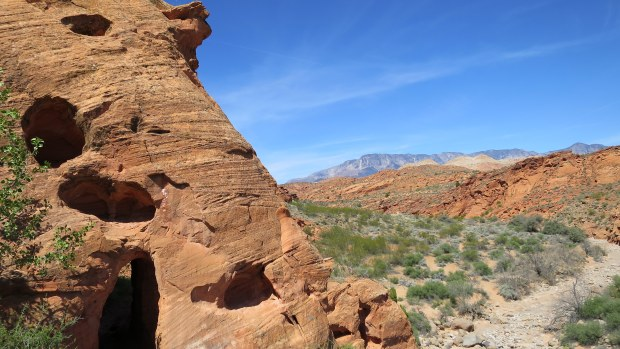 Another shot of the tunnel, Red Cliffs National Conservation Area, Utah