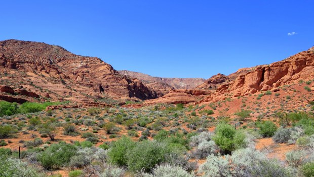 Anasazi Trail, Red Cliffs National Conservation Area, Utah