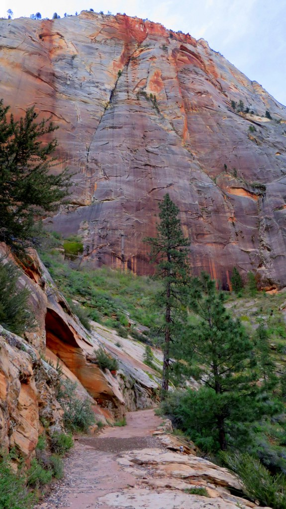 Hiking up the switchbacks, Observation Point Trail, Zion National Park, Utah