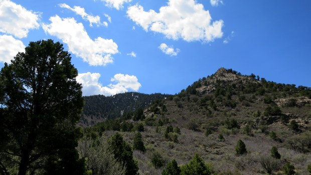 Duncan Springs Trail, Dixie National Forest, Utah