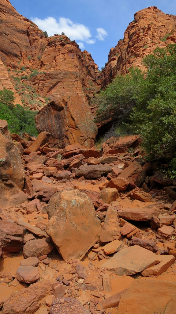 Hiking through the wash, Red Cliffs Conservation Area, Utah