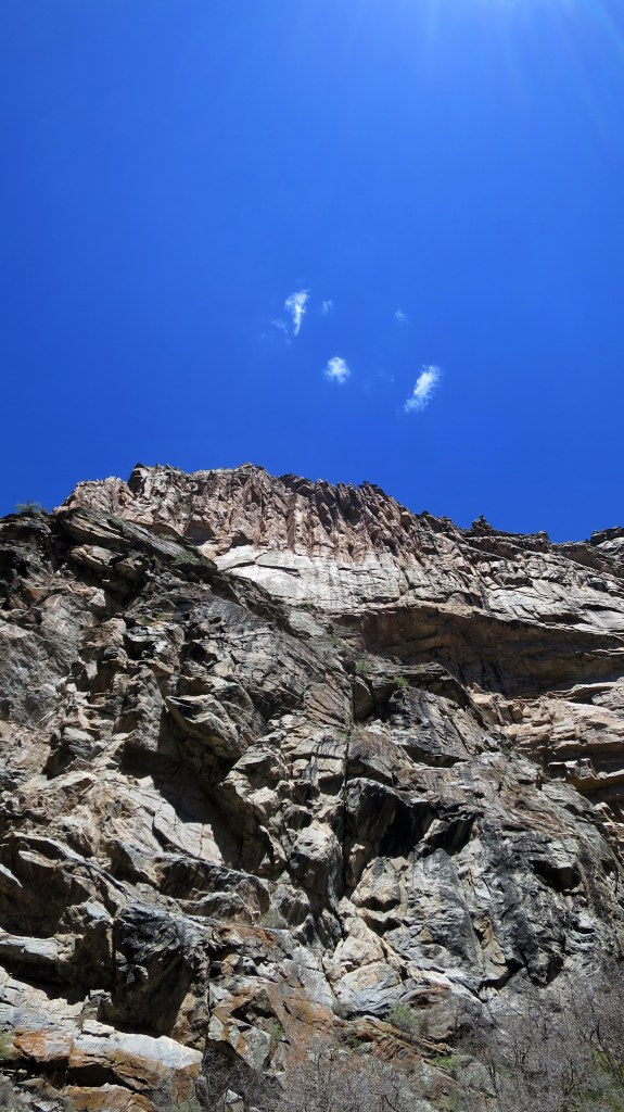 Looking up at top of canyon rim, Curecanti Creek Trail, Curecanti National Recreation Area, Colorado