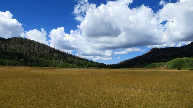 Navajo Lake Loop Trail, Dixie National Forest, Utah