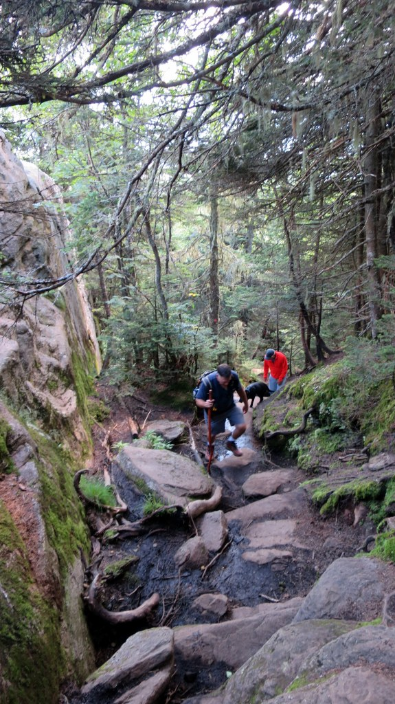 Robert, Tom, and Abby on the last ascent, Snowy Mountain Trail, Adirondacks, New York