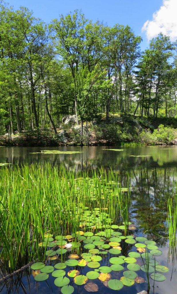 Lake Askoti, Harriman State Park, New York