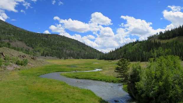 Zedds Meadow, Fishlake National Forest, Utah