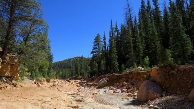 Entering Ashdown Gorge, Ashdown Gorge Wilderness, Dixie National Forest, Utah