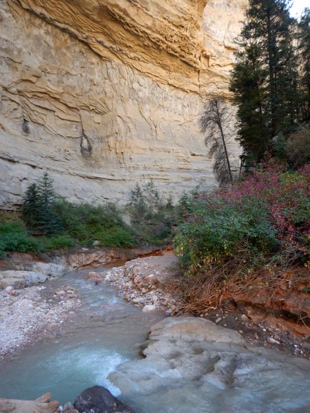 Ashdown Gorge Wilderness, Dixie National Forest, Utah
