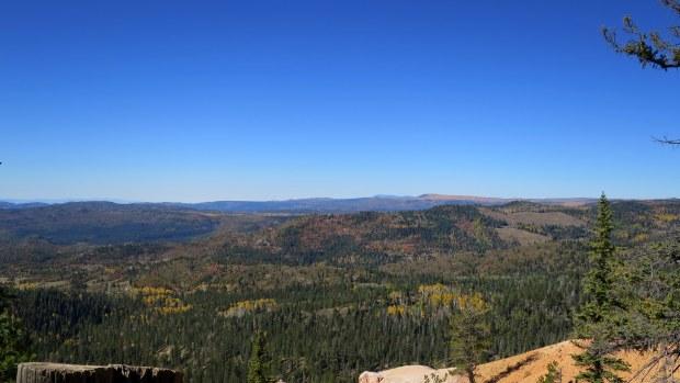 Cascade Falls Trail, Dixie National Forest, Utah