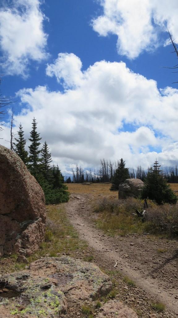 Marathon Trail, Dixie National Forest, Utah