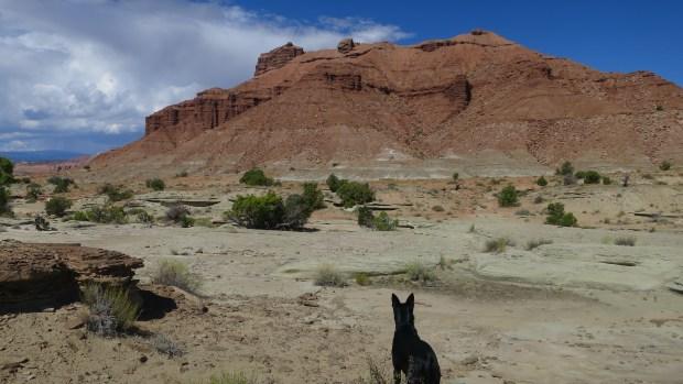 Salt Wash view area, Utah