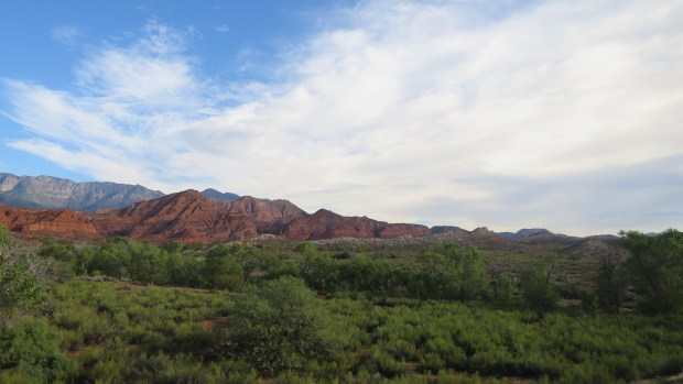 Red Cliffs National Conservation Area, Utah